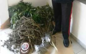 SULCIS, Scoperta banda di spacciatori: arresti a Calasetta e Sant'Antioco