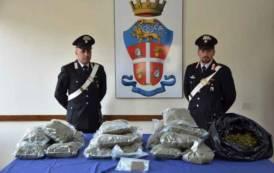 SAN GAVINO, Abbandona l'auto con 13 chili di marijuana e fugge: proseguono le ricerche