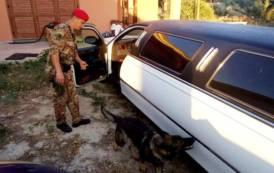 SARDEGNA, Operazione contro traffico di droga: arresti nelle province di Cagliari, Sassari e Nuoro (IMMAGINI)