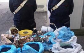 SERDIANA, Aveva in casa 30 chili di materiale esplosivo: arrestato 42enne