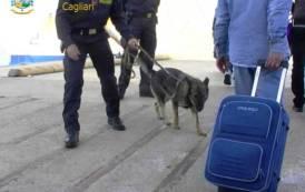 CAGLIARI, Lotta allo spaccio: sequestrata marijuana e hashish. Tre persone segnalate alla Prefettura