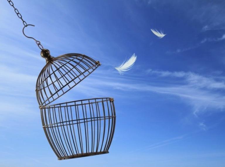 FRODOINO, A Quartu un improvviso e tardivo amore per la libertà