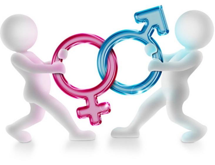 """SCUOLA, Alla Murgia non piace mozione 'antigender'. Truzzu: """"Vuole decidere i temi del centrodestra?"""". Orrù: """"Andremo avanti"""""""