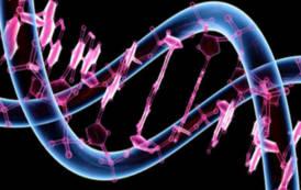 Studio sulla struttura genetica dei Sardi: coi Baschi progenitori d'Europa (Winston Smith)