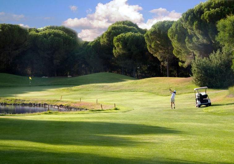 Le possibilità offerte dal golf per l'economia isolana (Gianfranco Leccis)