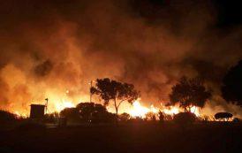 Incendio al Parco di Molentargius: le domande senza risposta di una cittadina (Lesya Pavlova)
