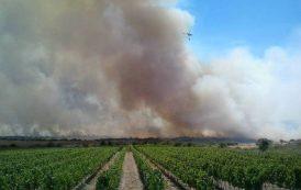 ISILI, Le immagini dell'incendio che ha bruciato oltre mille ettari e danneggiato tante aziende