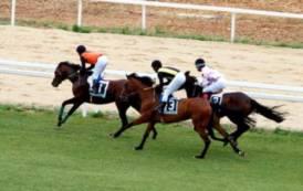 Oh oh cavallo: il declassamento governativo degli ippodromi sardi (Biancamaria Balata)