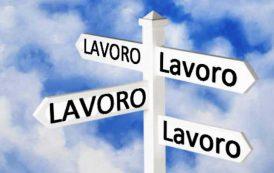 LAVORO, Nel secondo trimestre 2017 in Sardegna una piccola crescita degli occupati