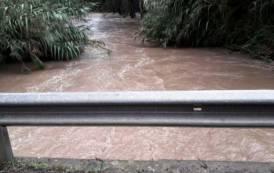 MALTEMPO, Greggi isolati e coltivazioni sommerse. Chiesto al Governo lo stato di calamità naturale
