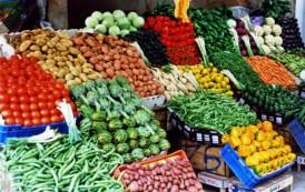 """AGRICOLTURA, Black list dei cibi stranieri. Coldiretti: """"Unione europea deve favorire il consumo dei prodotti del territorio"""""""