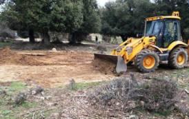 PESTE SUINA, Bonificata nella campagna di Orgosolo la zona della fossa di interramento maiali