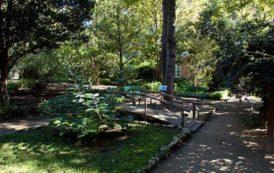 CAGLIARI, Orto botanico in festa: 150 anni dalla sua inaugurazione. Martedì 15 cerimonia solenne