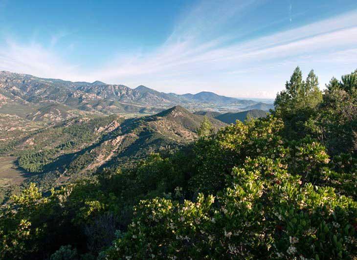 """AMBIENTE, Parco di Tepilora. Assessori Paci e Spano: """"Da ambiente e cultura la rinascita delle zone interne"""""""