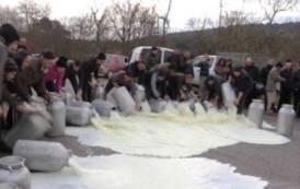 Vertenza latte: nel 1924 la sfida di Paolo Pili contro gli imprenditori romani del pecorino (Angelo Abis)