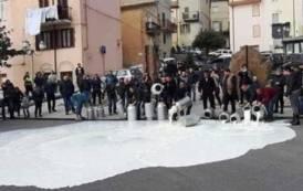 AGRICOLTURA, Pronto 'Decreto Emergenze': sostegno alle crisi di latte, agrumi ed olio in Sardegna, Sicilia e Puglia