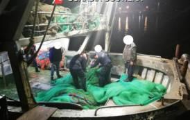 ARBATAX, Sequestrate retiutilizzate per la pesca a strascico: sanzioni per 8mila euro