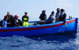 """CINEMA, Ai Nastri d'Argento """"Diario di Tonnara"""" del regista Zoppeddu: docufilm sull'epopea del mare e della fatica"""