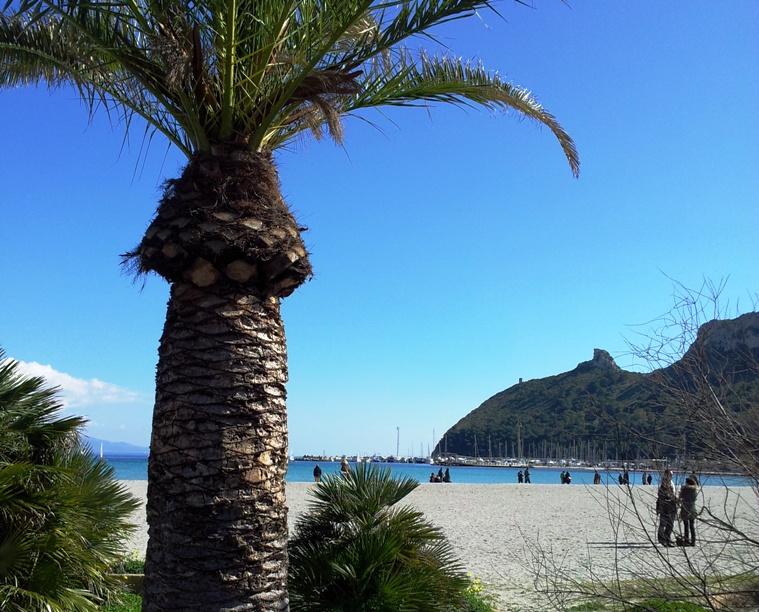 CAGLIARI, Il Comune annuncia che il Poetto sarà pronto per l'imminente stagione balneare