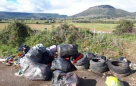 MORES, Rifiuti abbandonati nella Provinciale 63: chiesto l'intervento del Comune