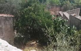 CAGLIARI, Edificio universitario abbandonato in viale Fra' Ignazio usato come ricovero dagli immigrati
