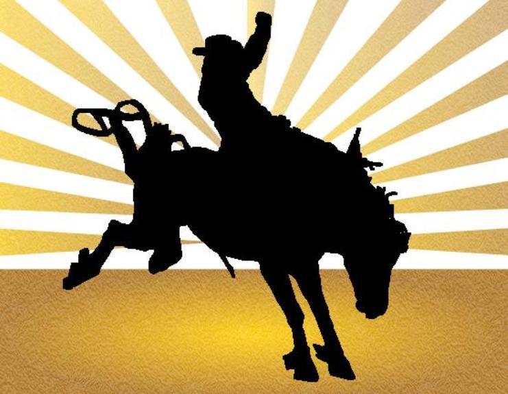 IL ROMITO, Dopo le dimissioni di Delunas, comincerà il rodeo di via Porcu