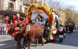 IL GIARDINIERE, Proteste per lo sfruttamento di buoi e cavalli a Sant'Efisio: animalisti e idiozia