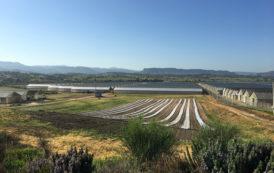 OZIERI, Maxi truffa da 55 milioni per ottenere i contributi pubblici: sequestrati due impianti fotovoltaici