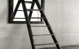 ARSENICO, L'arte dell'arrampicata: l'assessore Arru e la circolare Asl per dimettere e bloccare ricoveri