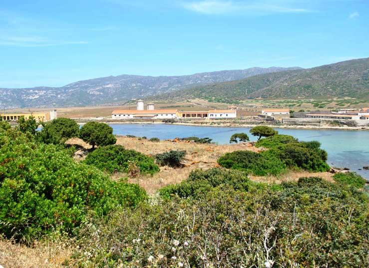 """ASINARA, Stintino capofila del progetto """"Prigionieri all'Asinara"""": campagna archeologica di scavi"""
