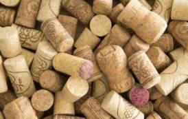 Vino d'eccellenza e tappo di silicone: incentivare prodotti naturali col marchio Sardegna (Biancamaria Balata)