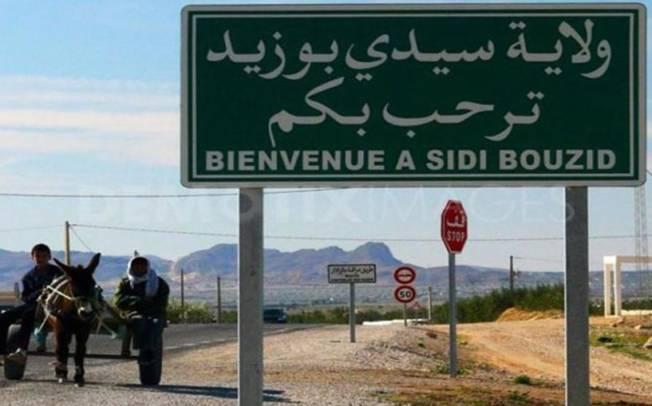 TUNISIA, Missione formativa a Sidi Bouzid rivolta a giovani allevatori tunisini