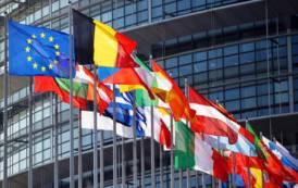 ELEZIONI, Cicu in lista alle Europee con Forza Italia, ma in Sicilia si litiga per il seggio in palio