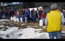TRAPANI, Le IMMAGINI della protesta dei pastori siciliani: latte versato e blocco stradale (VIDEO)
