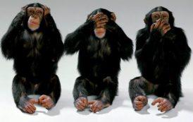 ARSENICO, Immigrazione: Cagliari chiama preoccupata, ma a Roma ci sono le tre scimmiette
